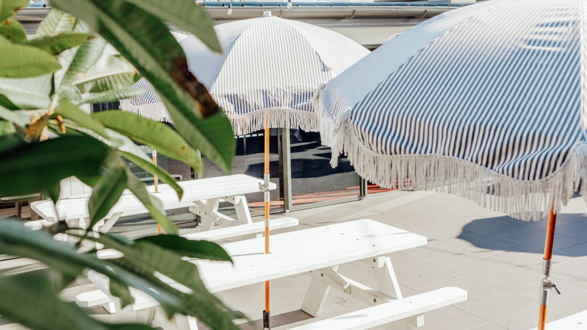 umbrellas on rooftop